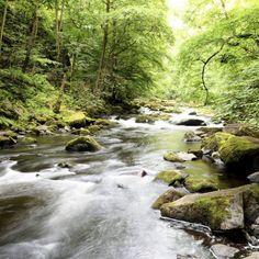 Frische Luft, imposante Berge, sagenhafte Wälder und ein ausgezeichnetes 5-Sterne Hotel — das alles erwartet dich während deines Wellness- und …
