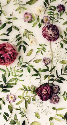 Wallpaper iPhone ⚪️ …