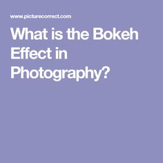 What is the Bokeh Effect in Photography?