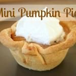 Pumpkin Pie Recipes for Fall - I've wanted to experiment with making mini-pies for a while now, but now somebody else has done the experimenting so I can just follow her directions!