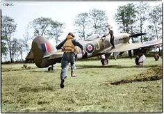 A pilot of No. 175 Squadron RAF scrambles to his waiting Hawker Typhoon Mark IB at B5 Airstrip Le Fresne-Camilly, Calvados, France following a call from the Group Control Centre ordering an air strike. 24th July 1944. The airstrip was built under German fire between 10th - 17th June 1944 and was home to the Hawker Typhoons of 121 Wing, Royal Air Force. (© IWM CL 570) (Colourised by Doug)