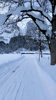 Beautiful Photos Of Nature, Beautiful Places To Travel, Amazing Nature, Aesthetic Photography Nature, Nature Photography, Dream Photography, Nature Gif, Winter Scenery, Vacation Places