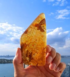 Fossilized Baltic Amber Healing Stone by BenitoArvizo on Etsy, $69.00