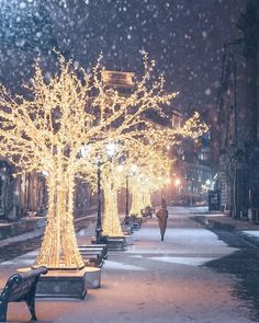 Christmas In The City, Christmas Time, Christmas Glitter, Winter Beauty, Adventure Awaits, Wonderful Time, Beautiful Places, Amazing Places, Natural