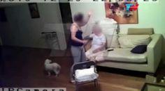 Una familia argentina creía haber encontrado a la acompañante perfecta para la abuela.  Sin embargo,  cuando vieron los videos de una cámara de seguridad se encontraron con una realidad