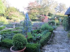 Judith's beautiful garden at Gowers Close B&B