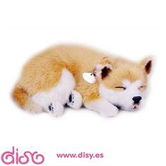 #peluchesquerespiran #peluchesmascotas Peluches que respiran Perfect Petzzz- Peluche perro Shiba 25cm www.disy.es