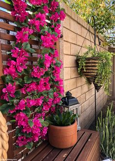 50 Popular Front Yard Hanging Plants Ideas To Make Home More Beautiful Scenery - The front yard of your home says a lot about you. This makes it all the more important that you pay special attention to the appearance of your home. Artificial Flowers Outdoors, Outdoor Flowers, Fake Flowers, Artificial Plants, Balcony Flowers, Silk Flowers, Outside Flower Ideas, Dried Flowers, Bougainvillea Trellis