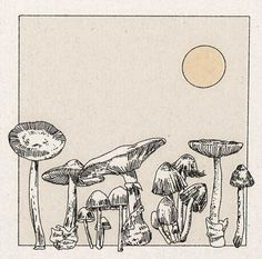 'Mushroom Garden' Print - 22 x 22