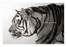TIGER by wulfanstein.deviantart.com on @DeviantArt