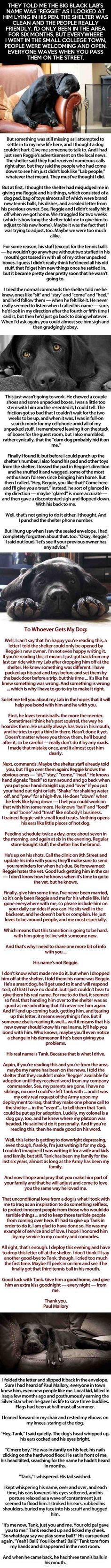 TANK, THE DOG - this will make you tear up (long pic) GREAT blurb (fiction or not?), about tank commander that loses his life overseas for his country. His dog (Tank) put up for adoption, etc.