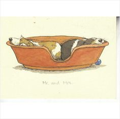 Colour Postcard - Mr & Mrs - Dogs in a bed on eBid United Kingdom