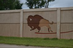 Buffalo adorn many of the walls along the highways through Oklahoma City. Oklahoma City, Buffalo, Cow, Walls, Animals, Animales, Animaux, Wands, Wall