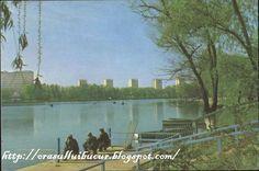 Bucharest, Niagara Falls, Nature, Painting, Travel, Art, Craft Art, Naturaleza, Paintings