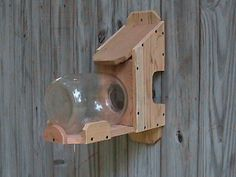 Cedar Squirrel Feeder: Large One Gallon Jar