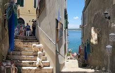 id – Just another WordPress site Bunt, Croatia, Wordpress, Pictures, Outdoor Pavers