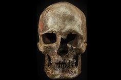 Cráneo del yacimiento de Dolni Vestonice (Republica Checa) datado en unos 31.000 años y perteneciente a las primeras poblaciones de Homo sapiens llegadas a Europa. Fuente: www.newscientist.com.