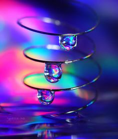 Colors of the Rainbow Drops