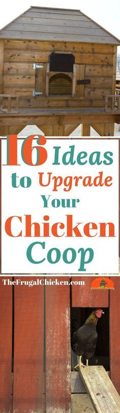 Love your chicken coop but wish it was EXTRA special? Or just want to save some time and money? Here's 16 genius upgrades you can make to your coop in just minutes!