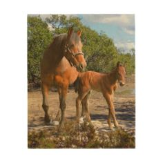 Horses Wood Prints