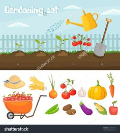 Garden colorful designs elements vector farm illustration icon set of different gardening equipment, tools, vegetables and plants.