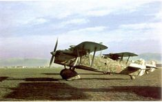 Fiat, Ww2, Fighter Jets, Aircraft, America, History, Vehicles, Dogs, Aviation