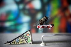 Fly on a skateboard or amazing adventures of Mr. Well, although the picture is not photoshop, we must admit that the fly actually is dead Photoshop, Cool Pictures, Cool Photos, Amazing Photos, Creative Photos, Fotografia Macro, Longboarding, Poses, Photo Series