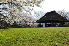 静かな春の日 - 大宇陀・万葉公園にて (2012/4/17)