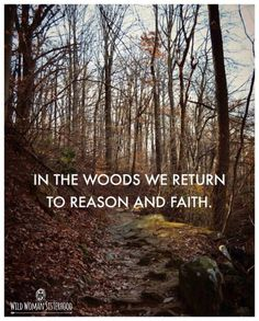 In the Woods we return to reason and faith.