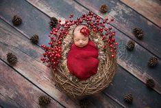 Christmas newborn photography - Christmas, berries, wreath, pinecones