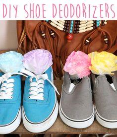 DIY Shoe Deodorizers