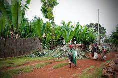 Southern Ethiopia/Checha/Dorze tribe http://zwiedzajacswiat.com/