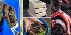 Manual de vermicompostaje. Cómo hacer vermicomposteras y humus de lombriz. Guía práctica - Garden Compost, Meat, Pallets, Food, Remainders, Homes, Planters, Vegetables Garden, How To Make