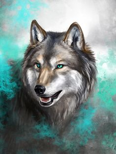 Turquoise Wolf by KimDingwall on DeviantArt