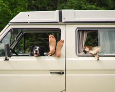 Maddie helped Momo & Andrew discover the fine art of getting into the chill zone this weekend. Always good to see them ⚡️ Thing 1, Dog Travel, Travel Tips, Van Life, Puppy Love, Best Dogs, Fur Babies, Your Dog, Dog Lovers