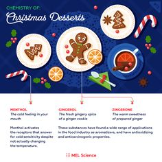 Mmm, which of these holiday aromas do you love most? Subscriptions For Kids, Chemistry Set, Ginger Cookies, Science Facts, Food Industry, Christmas Desserts, Holiday, Christmas Deserts, Gingerbread Cookies