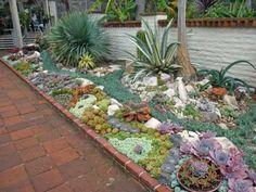 Outdoor Succulent Garden