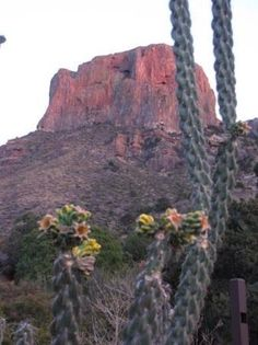 Chisos Mountains (Big Bend National Park, TX): Address, Top-Rated Attraction Reviews - TripAdvisor