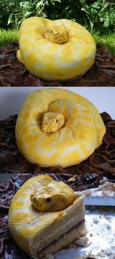 SHUT UP!!!! A anake cake-Haven't found a recipe yet but the photos are so realistic they blow your mind