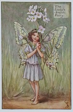 "The Flower Fairy - Ladys Smock - Original Vintage Print from the 1930s      ""Very good condition and the colors have retained their original"
