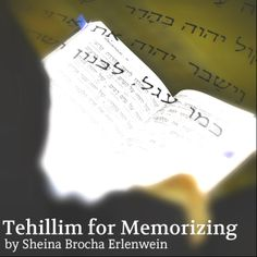 Ever thought about how useful it would be to know all of Tehillim by heart?  Shabbos Mevarchim, Rosh Hashana, times of need etc.!  Sheina Brocha Erlenwein has recorded herself singing Tehillim to niggunim as an aid for memorizing.  Play it for your children to help them learn their birthday kapitle or prepare for Shabbos Mevarchim.   To purchase contact livegeulanow@gmail.com.  Each recorded sefer of Tehillim is being sold for $5 for the next month. Click to hear sample (kol isha)