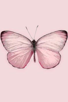Pink so girly so pretty pink litghts up a dark hart Pink Love, Pretty In Pink, Perfect Pink, Cute Pink, Papillon Rose, I Believe In Pink, Pink Butterfly, Madame Butterfly, Butterfly Tattoos