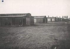 Birkenau. Picture by Marek Księżarczyk, Auschwitz Study Group member.