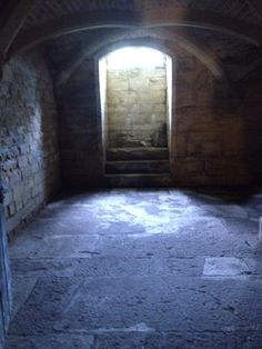Cellar in Woodchester mansion. Gloucestershire