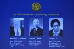 Nobel prize shared by scientists for parasitic disease drug discoveries