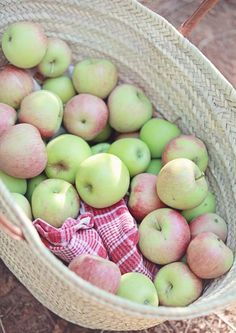 (vía Dreamy Whites: Apple Picking in an orchard along Apple Hill, a New French Market Basket) Fruit And Veg, Fruits And Veggies, Fresh Fruit, Vegetables, Fresh Apples, Apple Harvest, Fall Harvest, Autumn Fall, Market Baskets