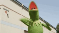 happy excited kermit the frog