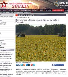 По регионах Украины распространают фейковые пророссийские петиции