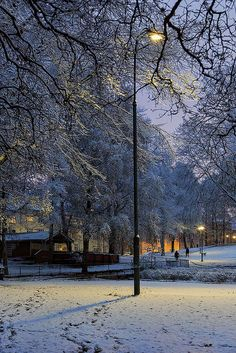 Snowy park in Torshov, Oslo, Norway