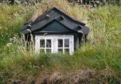 Green roof in Tórshavn, Faroe Islands